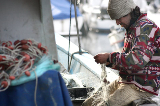 Fisherman-network-boat-sea-51005