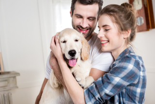 Pet Trusts in California Are They a Good Idea_