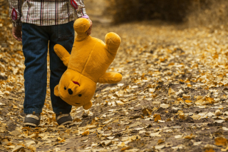 Child-autumn-bear-leaves
